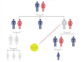 Relationship Reconstruction
