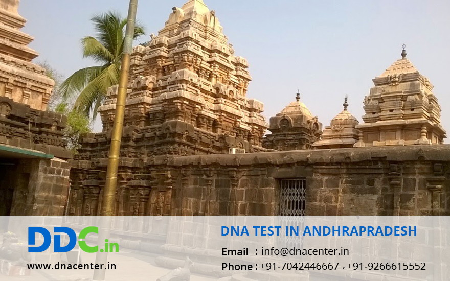 DNA Test in Andhrapradesh