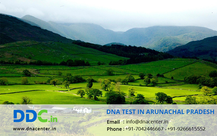 DNA Test in Arunachal pradesh