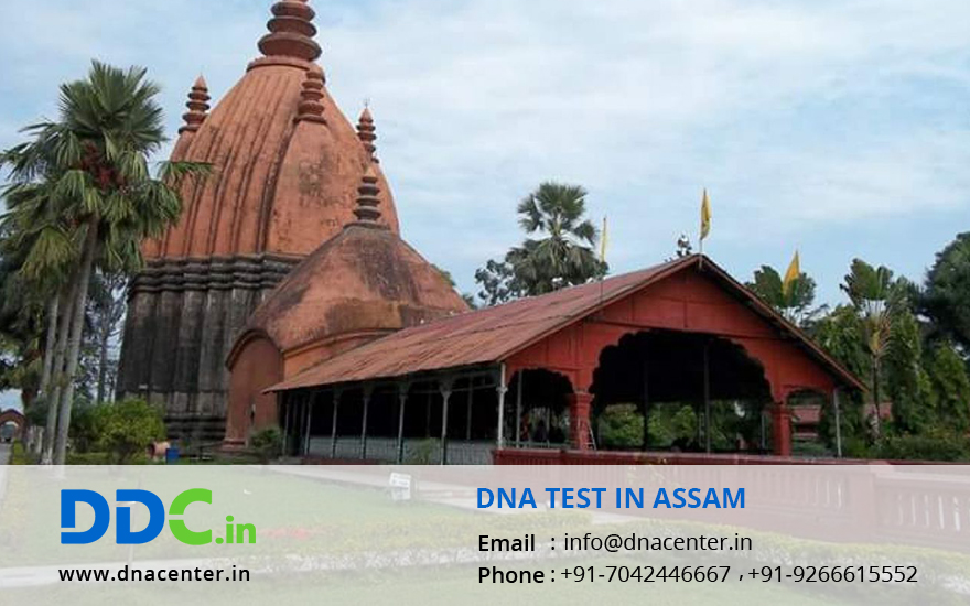 DNA Test in Assam