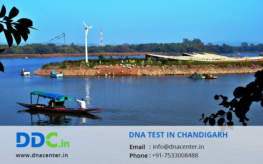 DNA TEST IN CHANDIGARH