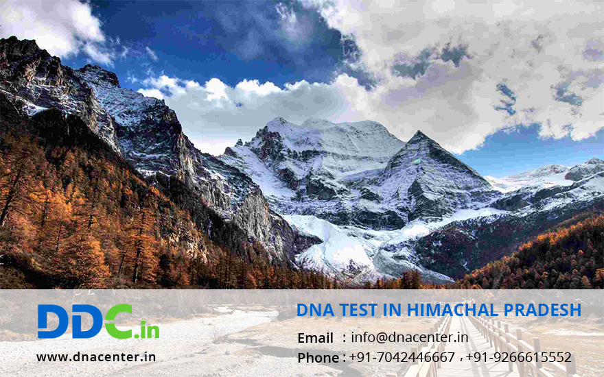 DNA Test in Himachal Pradesh