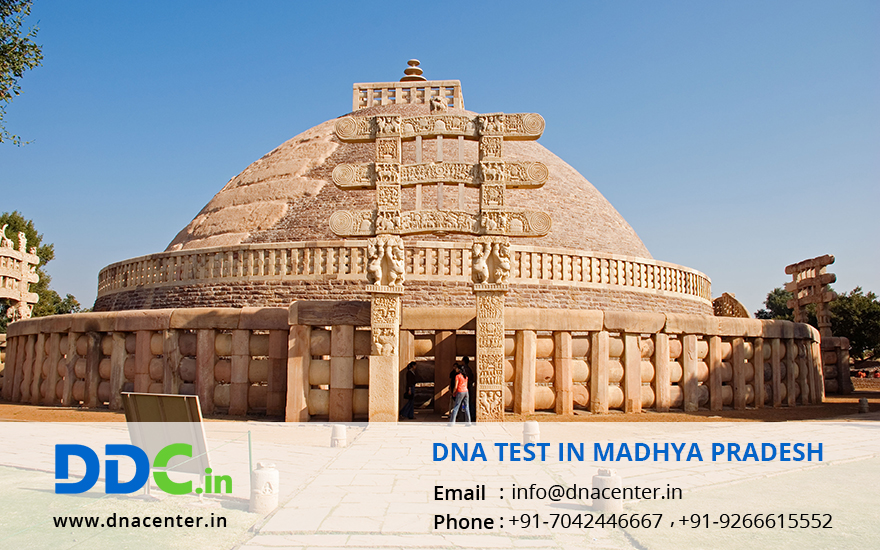 DNA Test in Madhya Pradesh