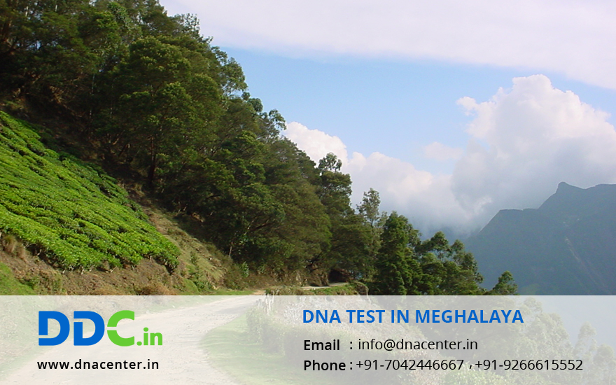 DNA Test in Meghalaya