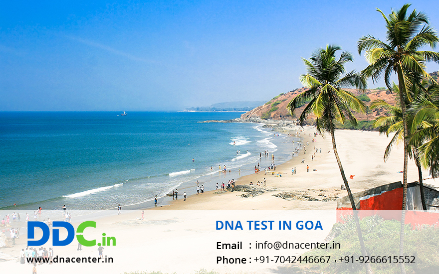 DNA Test in Goa