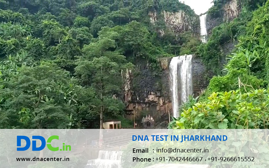 DNA Test in Jharkhand