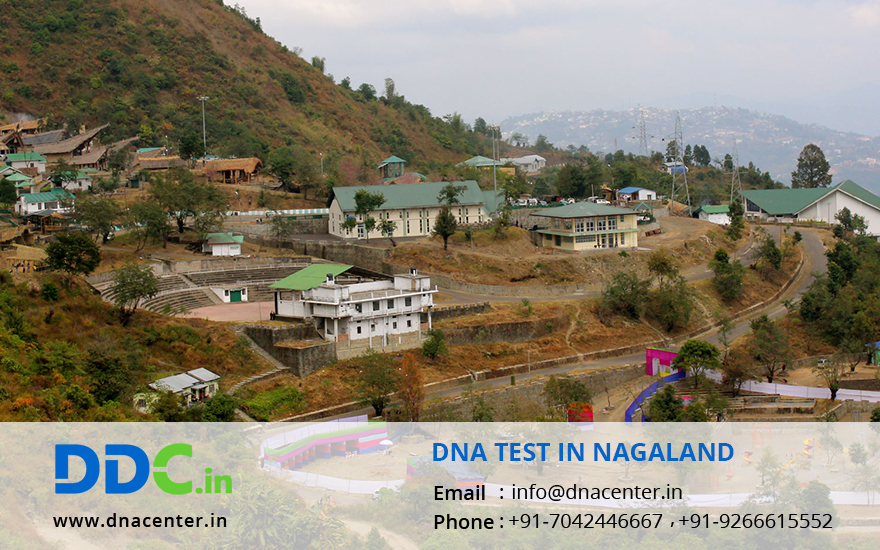 DNA Test in Nagaland