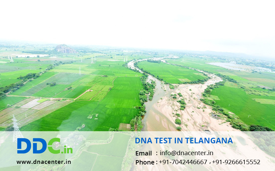 DNA Test in Telangana