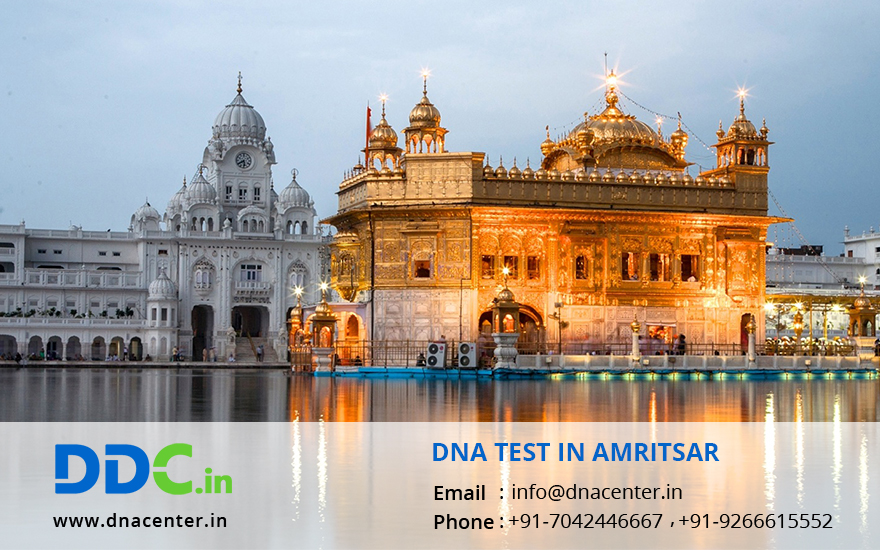 DNA Test in Amritsar