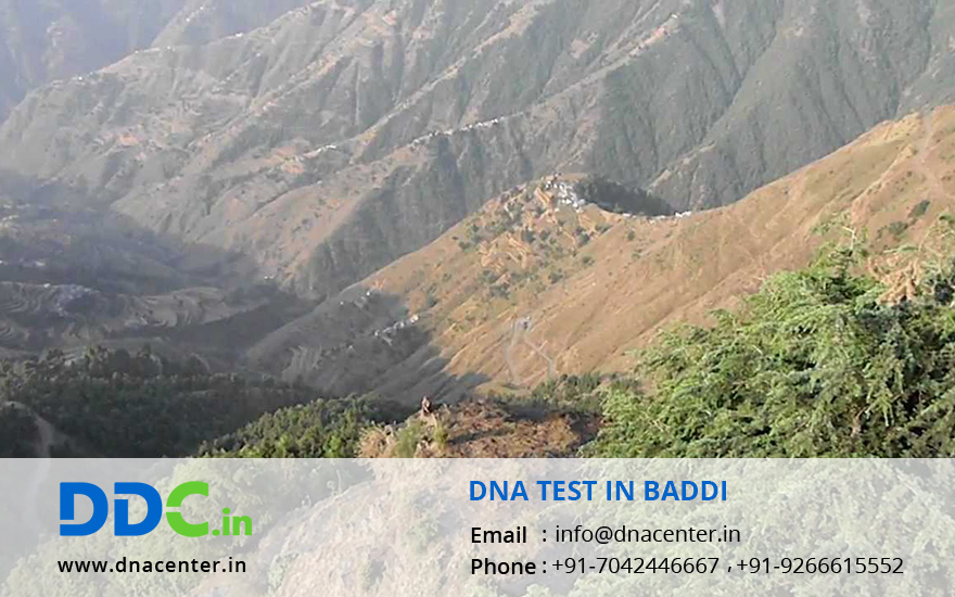 DNA Test in Baddi
