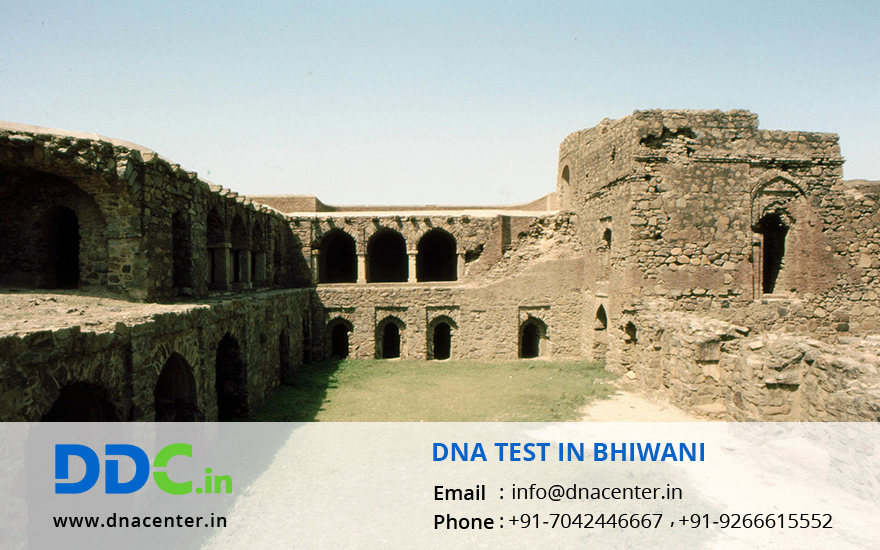 DNA Test in Bhiwani