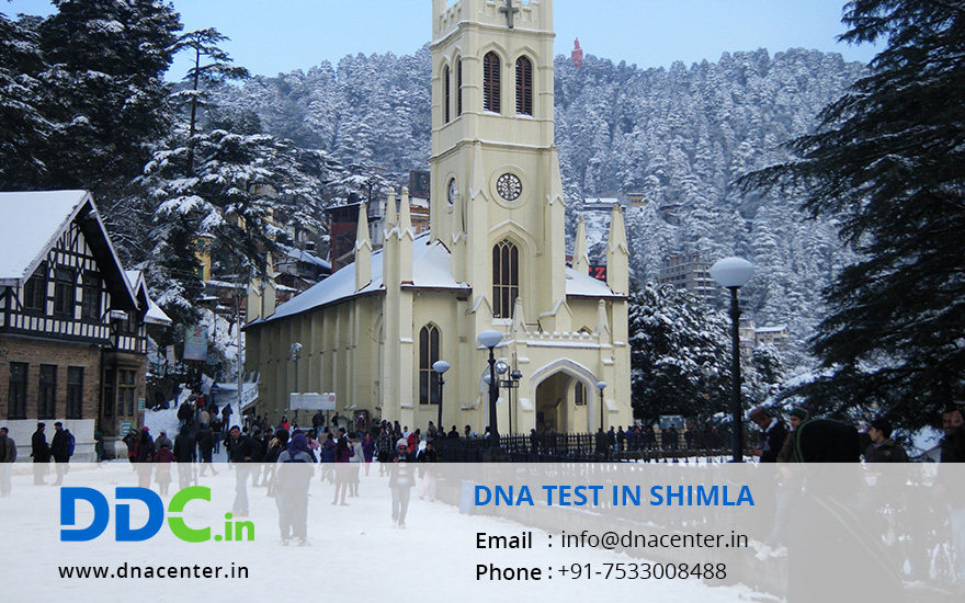 DNA TEST IN SHIMLA