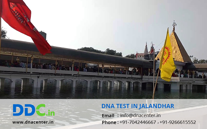 DNA Test in Jalandhar