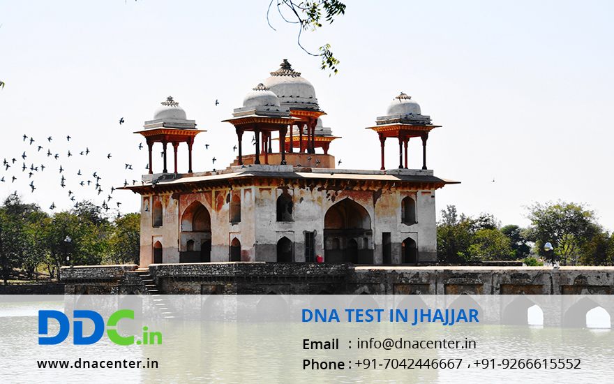 DNA Test in Jhajjar