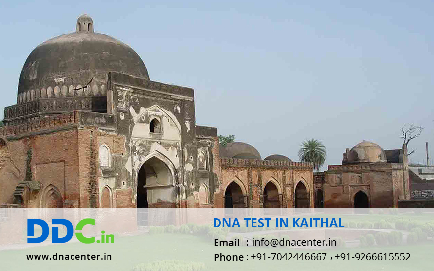 DNA Test in Kaithal