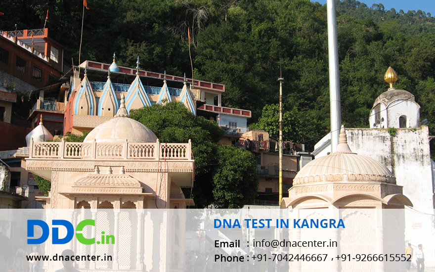 DNA Test in Kangra