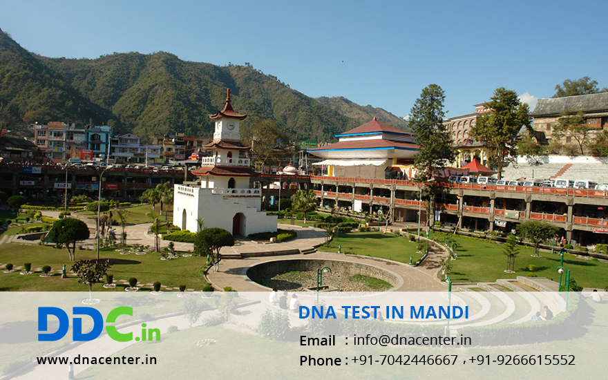 DNA Test in Mandi