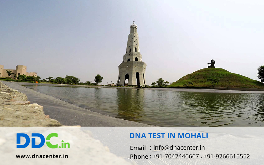 DNA Test in Mohali