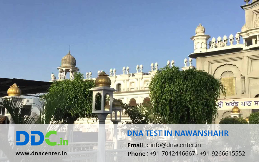 DNA Test in Nawanshahr