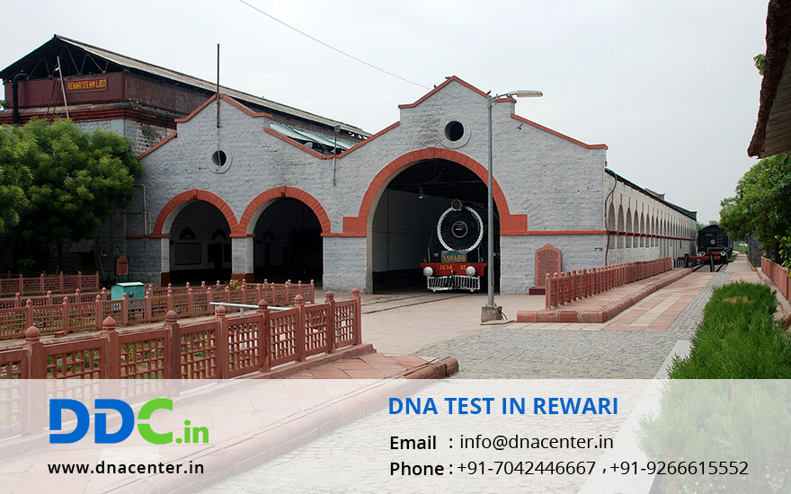 DNA Test in Rewari