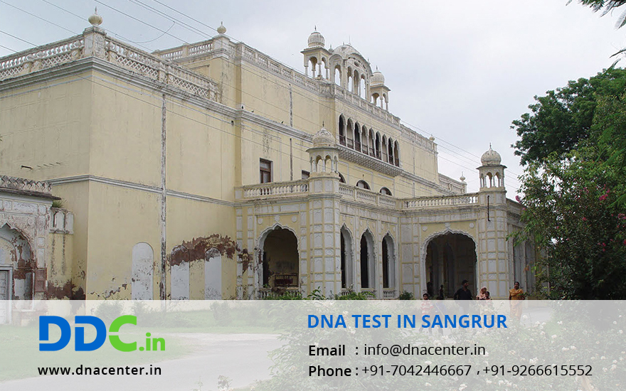 DNA Test in Sangrur