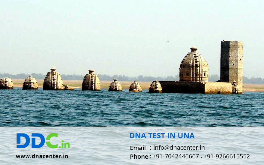 DNA Test in Una