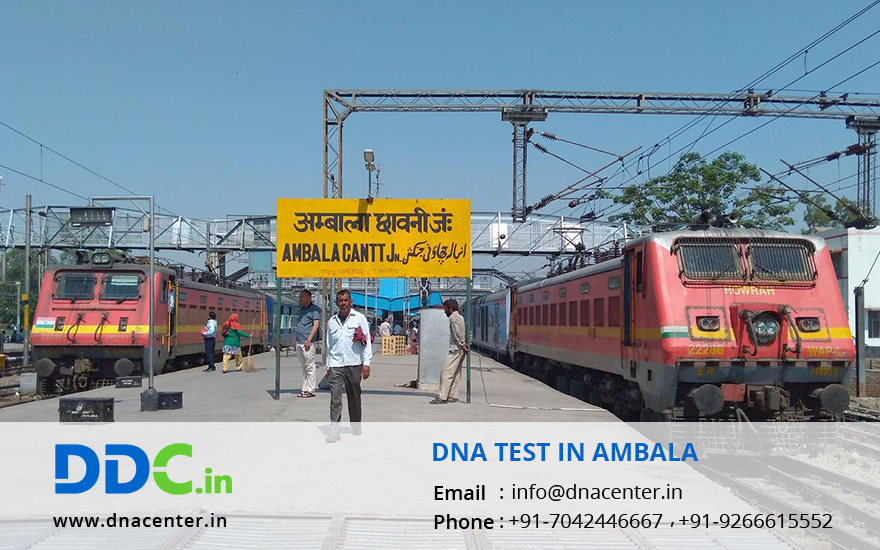 DNA Test in Ambala