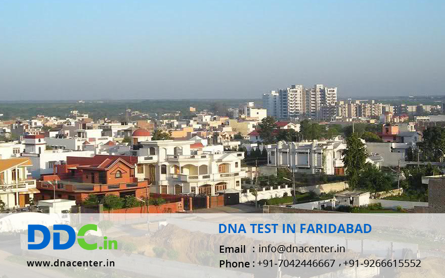 DNA Test in Faridabad