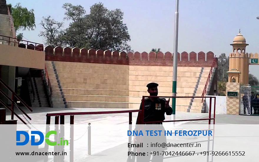 DNA Test in Ferozpur