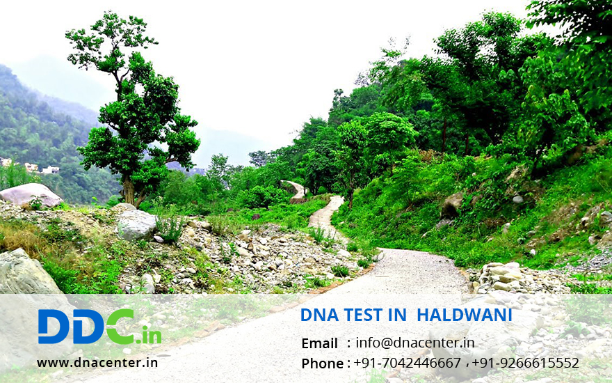 DNA Test in Haldwani