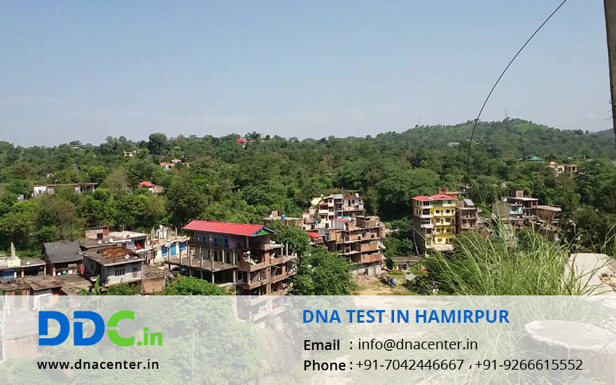 DNA Test in Hamirpur