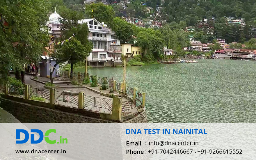 DNA Test in Nainital