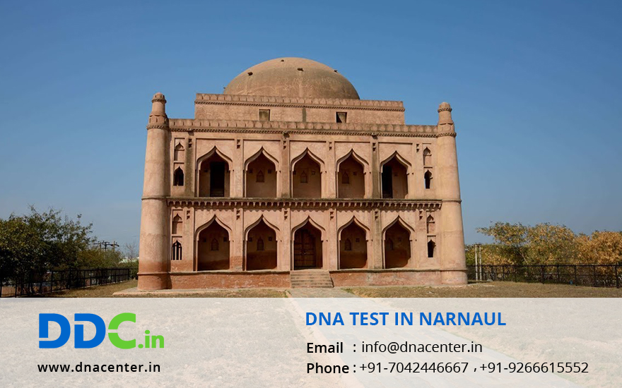 DNA Test in Narnaul