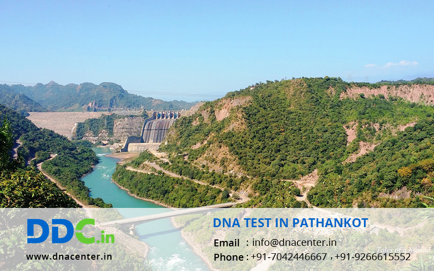 DNA Test in Pathankot