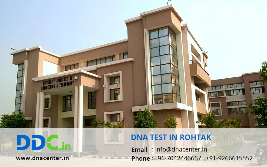 DNA Test in Rohtak