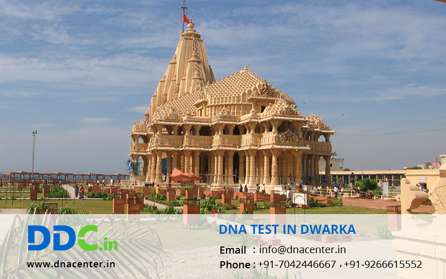 DNA Test in Dwarka
