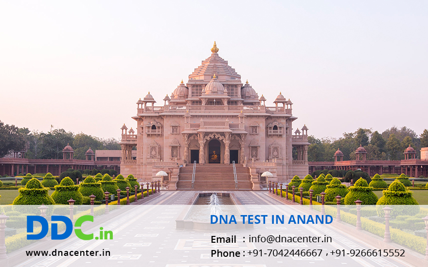 DNA Test in Anand