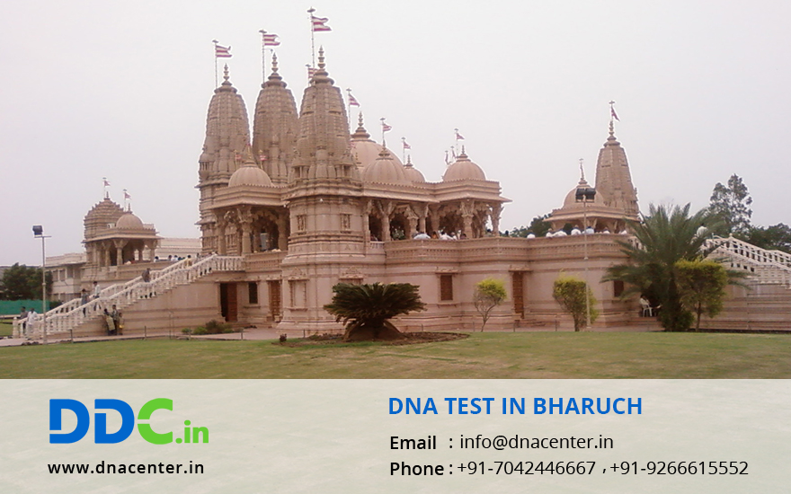DNA Test in Bharuch