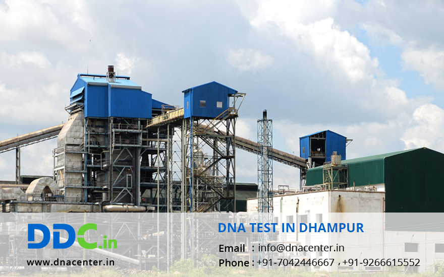 DNA Test in Dhampur
