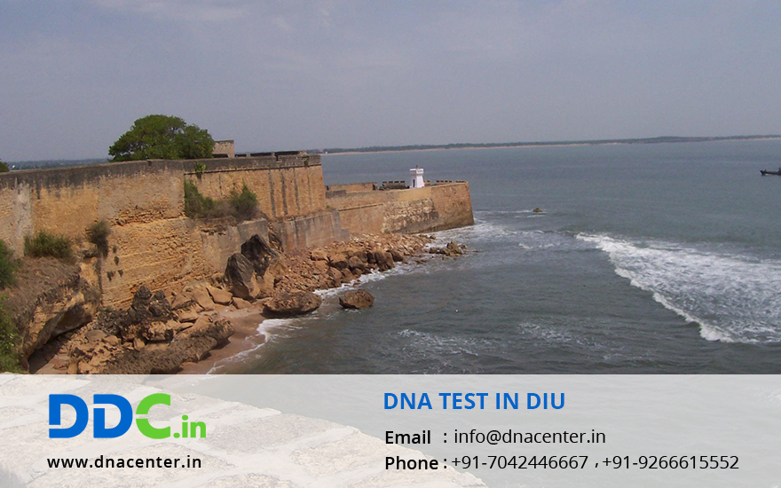 DNA Test in Diu