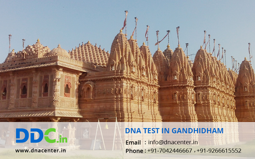 DNA Test in Gandhidham