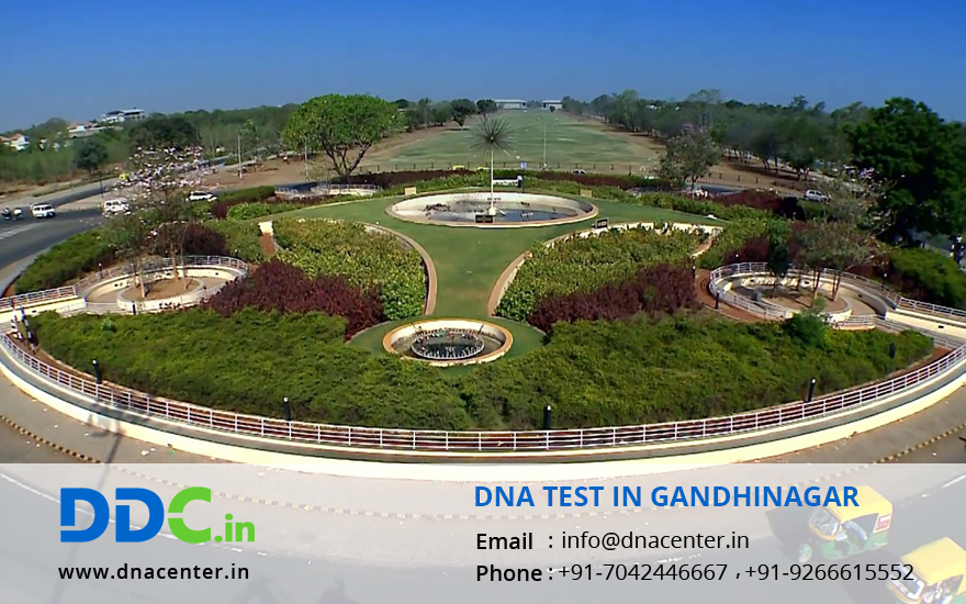 DNA Test in Gandhinagar