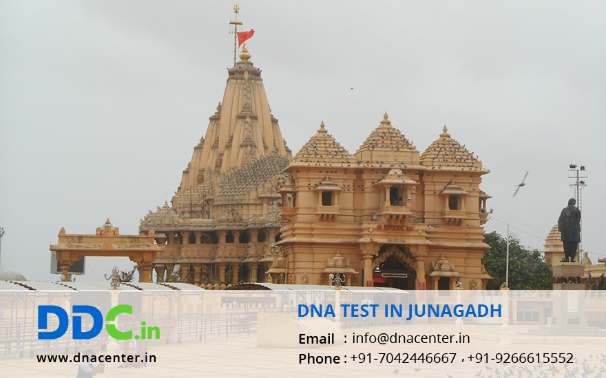 DNA Test in Junagadh