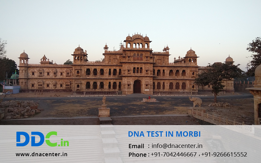 DNA Test in Morbi