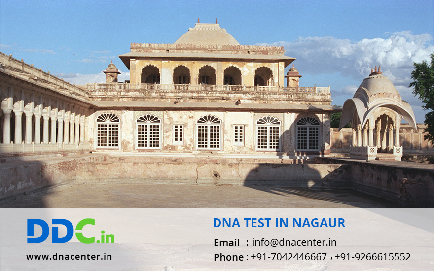 DNA Test in Nagaur