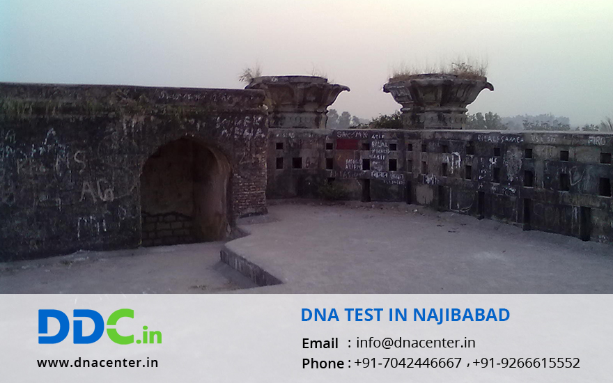DNA Test in Najibabad