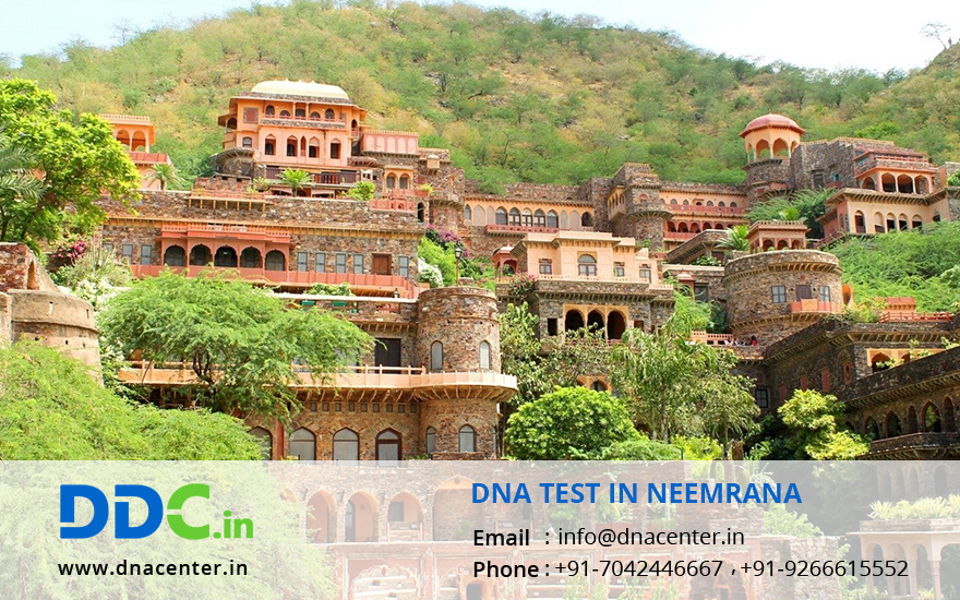 DNA Test in Neemrana