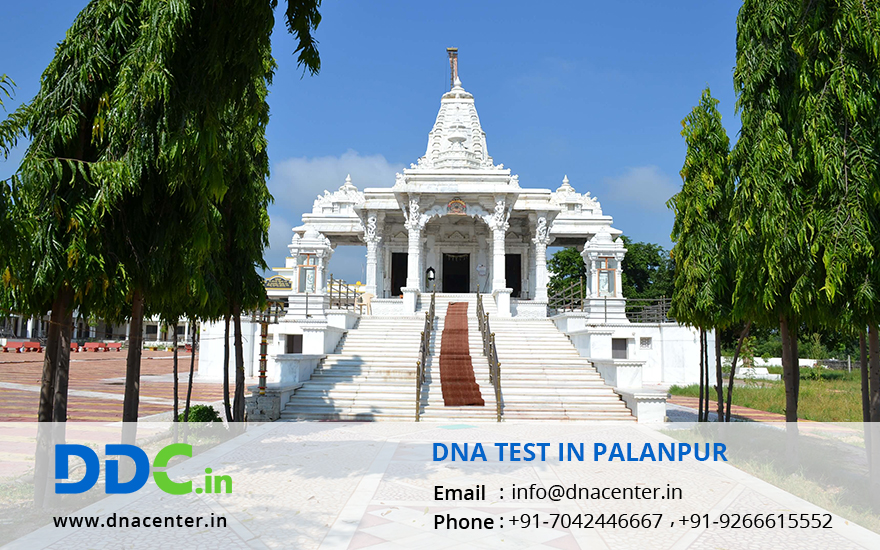 DNA Test in Palanpur