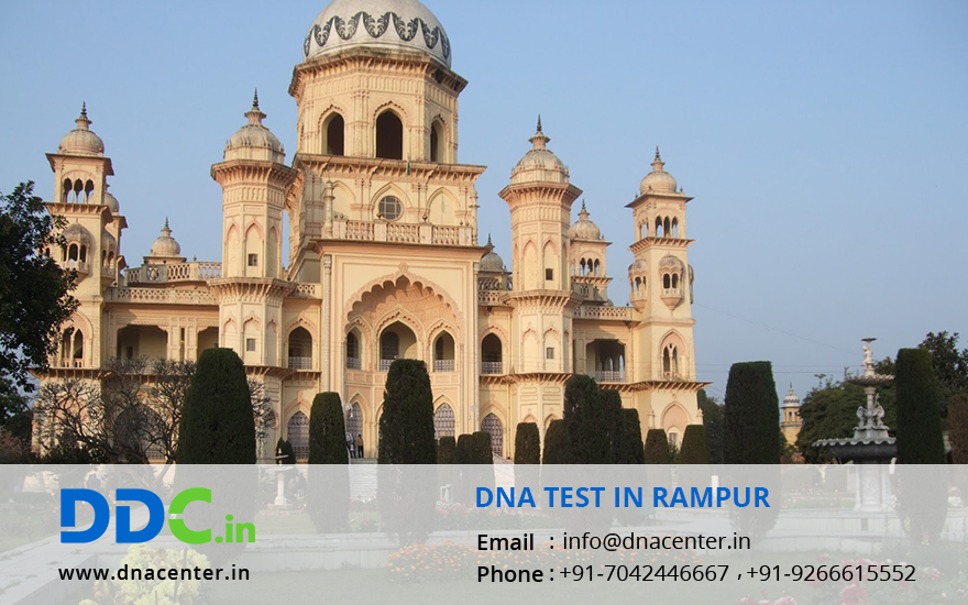 DNA Test in Rampur