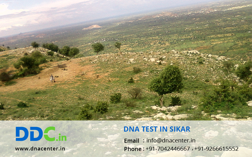 DNA Test in Sikar